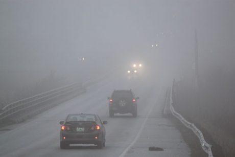 pedir taxi en niebla