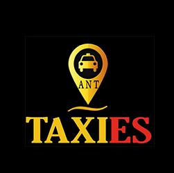 pedir taxi en san vicente del raspeig