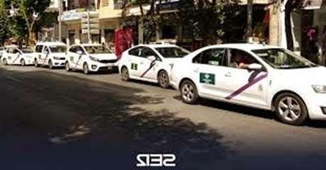 reservar-taxi-mascotas-Pepino