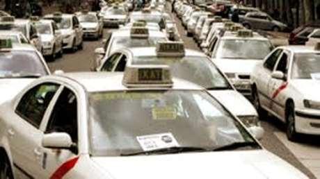 radio-taxi-animales-Ponte Caldelas