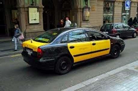 taxista-mascotas-Arévalo