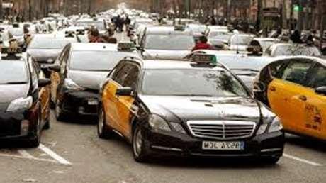 reservar-taxi-mascotas-Vélez-Málaga