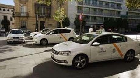 taxi-mascotas-Valdefresno