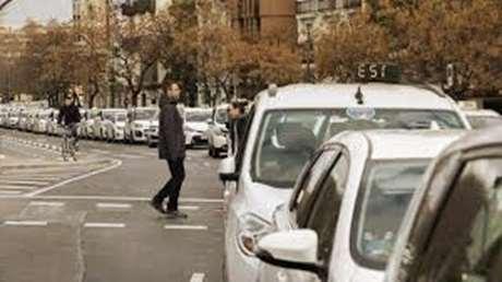 pedir-taxi-mascotas-Jérica