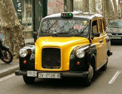 taxi-mascotas-Valga